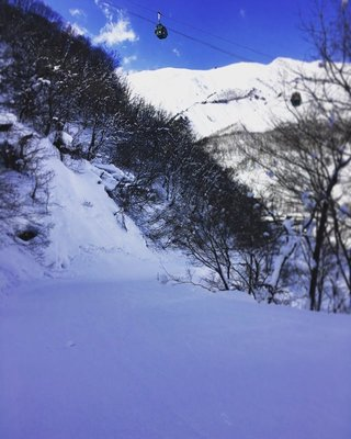 hakuba47 today